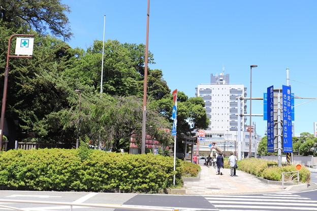 金沢八景周辺散策 20190616_09