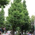 Photos: 千駄ヶ谷周辺散策 20190706_25
