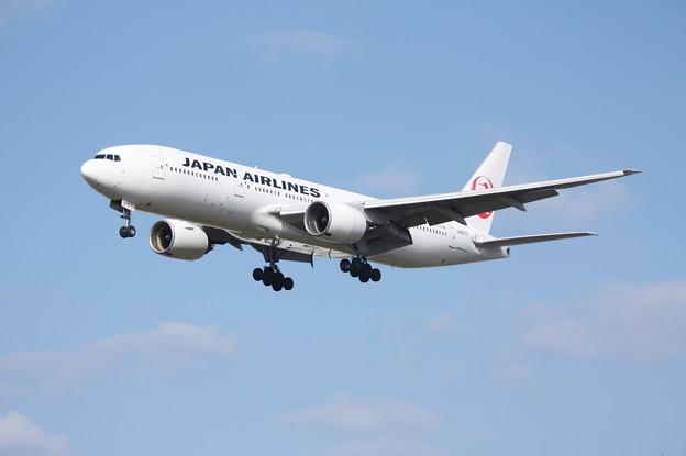 日本航空 JAL B777-200 JA8979 (6)