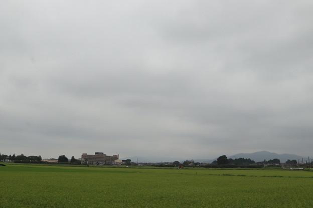 夏の風景 20190811_05