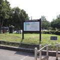 Photos: 城南島海浜公園 20190817_01