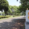 城南島海浜公園 20190817_42