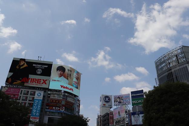 渋谷 20190817_04