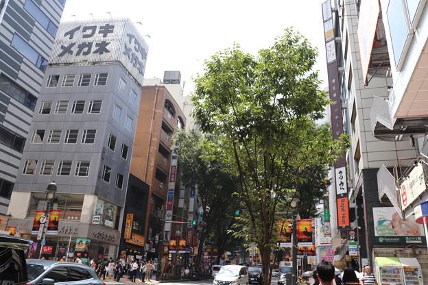 渋谷 20190817_19