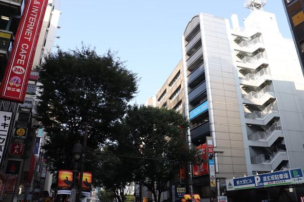 渋谷 20190817_26