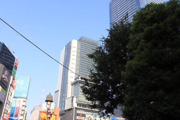 渋谷 20190817_31