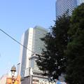Photos: 渋谷 20190817_31
