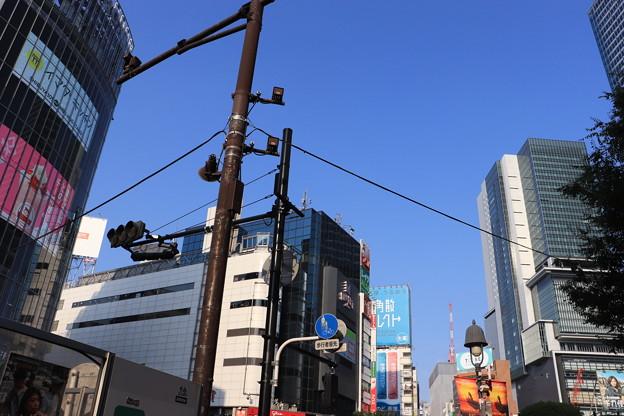 渋谷 20190817_32