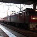 水戸駅で抑止している安中貨物5094レ EH500-74 2019.09.10 (1)