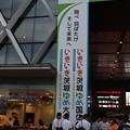 水戸駅南口 いきいき茨城ゆめ国体・大会 ラッピング (3)