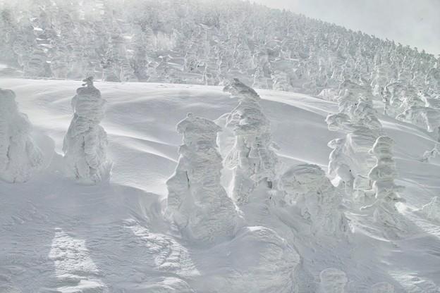 01.蔵王のモンスター、樹氷たち その1