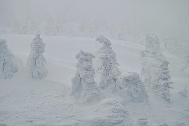 03.悪天候下の樹氷たち