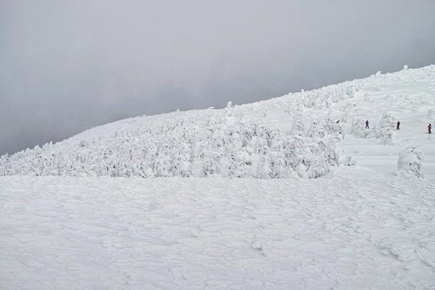 05.樹氷のなりそこない