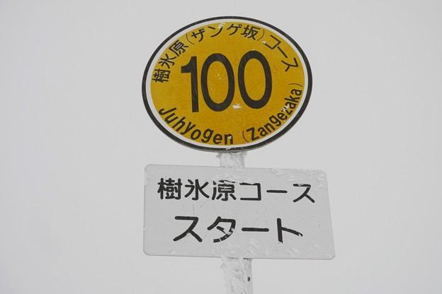 16.樹氷原コーススタート地点にある、100番看板