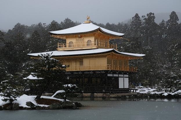 05.雪化粧した鏡湖池と金閣寺舎利殿 その3