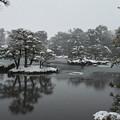 Photos: 12.雪化粧した鏡湖池の木々たち