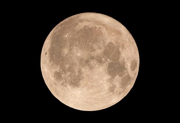 写真: 10.300(450)mmでの満月撮影 & 大トリミング その5