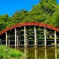 写真: 丹生都比売神社輪橋