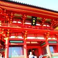 写真: 鶴岡八幡宮