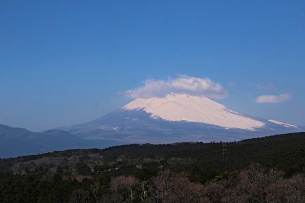 三島スカイウォークからの富士山