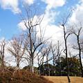 Photos: 寒~~い・・(><;