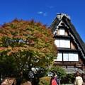写真: 日本民家園にて(2)