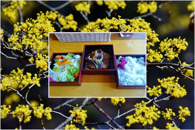 Photos: 焼肉弁当