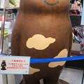 写真: チョコあべのべあ