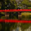 写真: 茶臼山和気橋