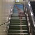 キリン階段