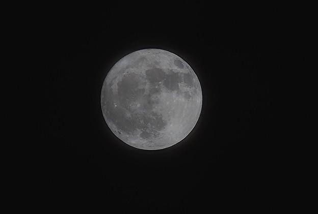 写真: お月さん