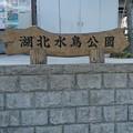 湖北水鳥公園/滋賀県