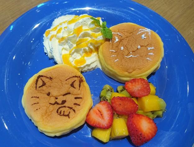ねこねこフルーツパンケーキ
