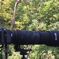 Photos: カメラ