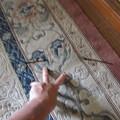 絨毯を焦がしたのは、誰だ!