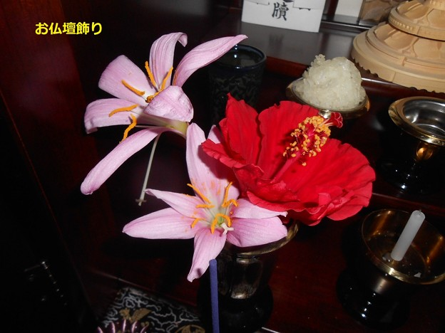 お仏壇に飾る花