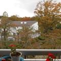 窓の外の紅葉が早いものから始まっている