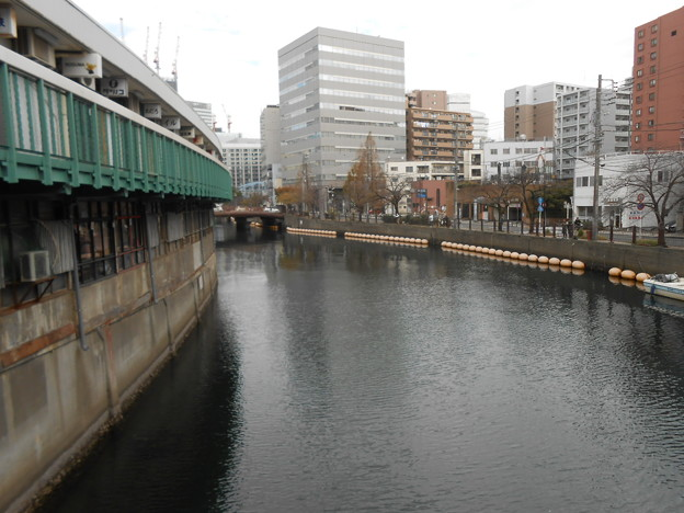 ハゼ 横浜大岡川へ電車にて