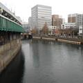 Photos: ハゼ 横浜大岡川へ電車にて