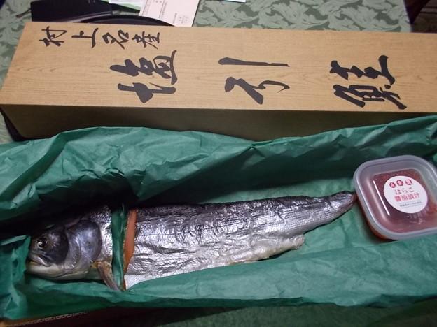 村上の塩引き鮭は高級で自分では買えません