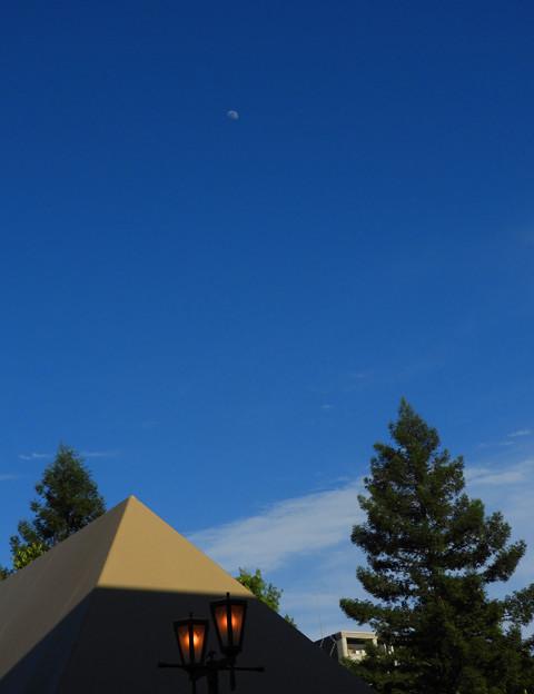 今日の 午後 お月様が~♪