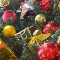 クリスマス用の飾り~♪
