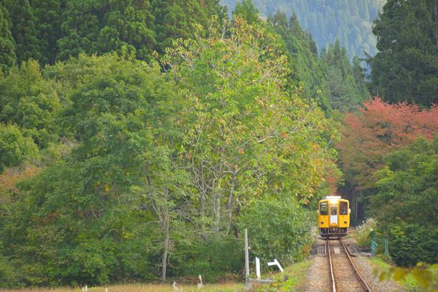 秋の秋田内陸線2