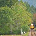 写真: 秋の秋田内陸線2