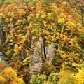 写真: 秋の鳴子峡1