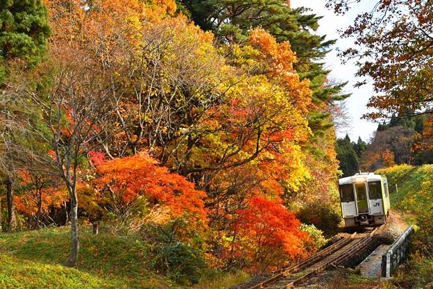 Photos: 紅葉の北上線2