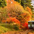 写真: 紅葉の北上線3
