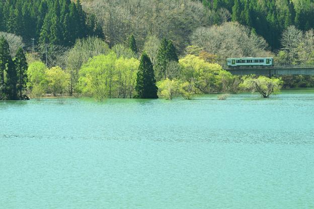 春の錦秋湖5