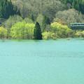 Photos: 春の錦秋湖5