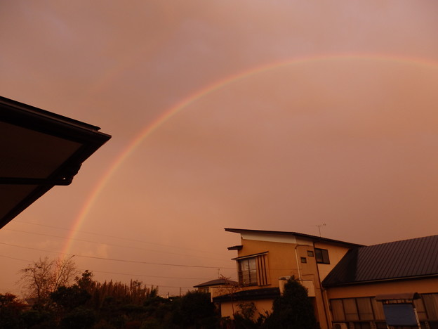 大きな虹が出てた